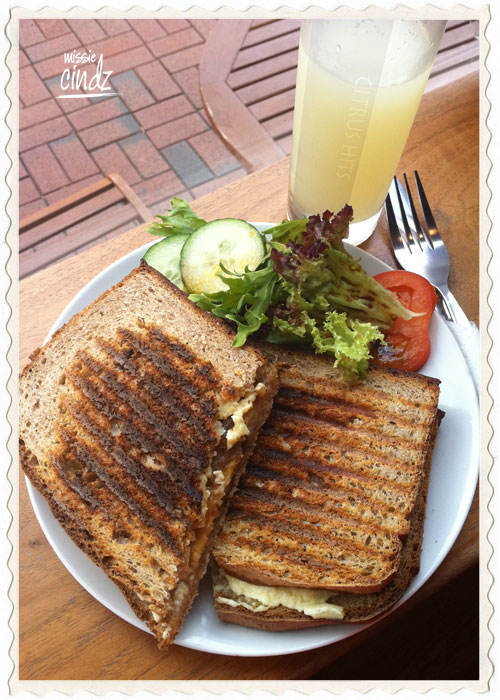 PJ Taste Ultimate Cheese Toastie with caramalised local onions and Henderson's Relish