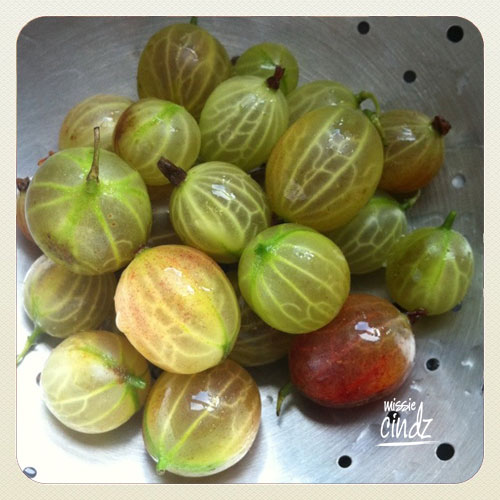 Fresh gooseberries for breakfast