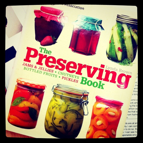 My new book for next month's reading – The Preserving Book