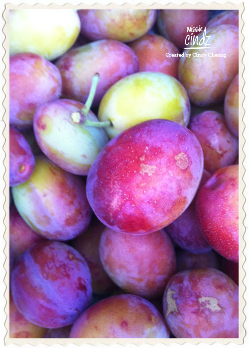 Sheffield home-grown Victorian plums, grown in my own garden and hand picked by myself