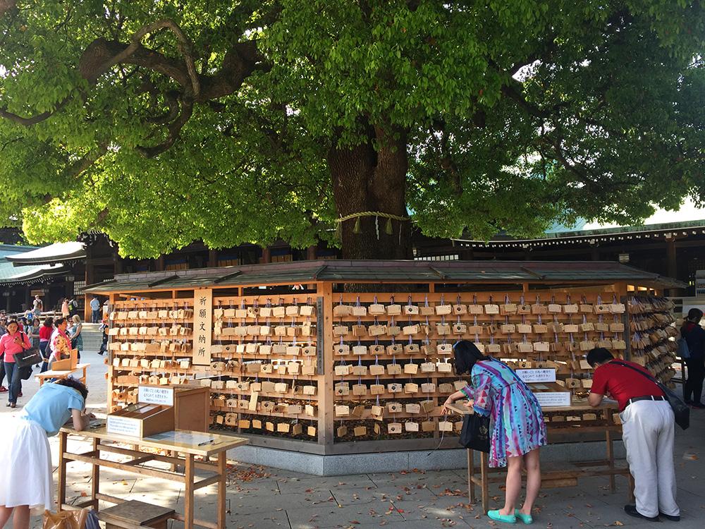 missie-cindz-Meiji-Shrine-4