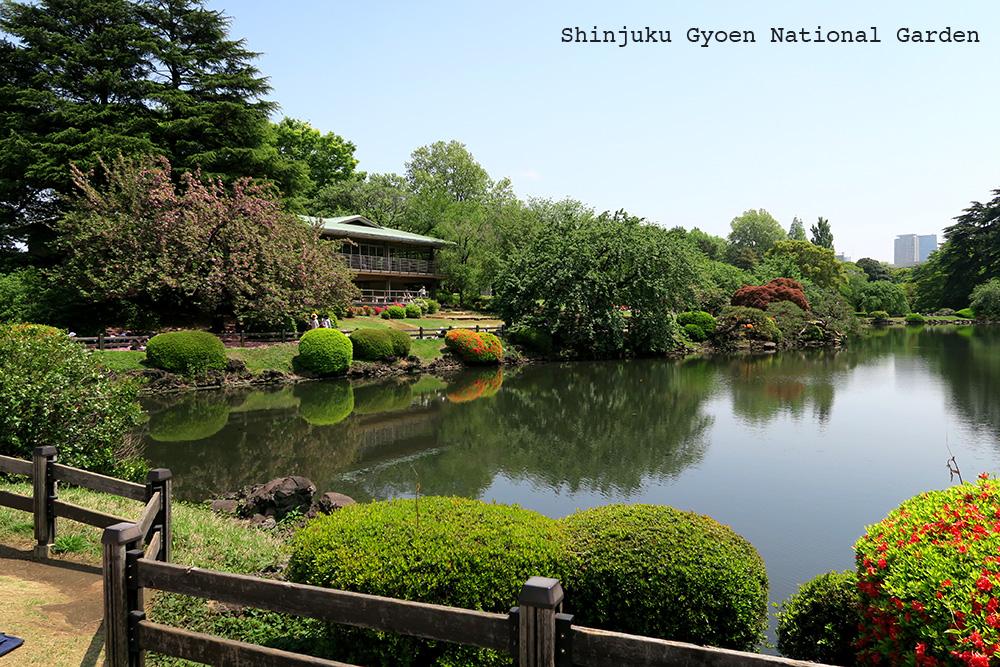 missie-cindz-shinjuku-gyoen-garden