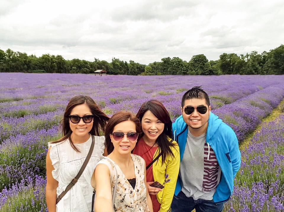 Mayfield Lavender, Surrey